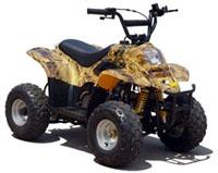 50cc LG Type R 4 Stroke ATV