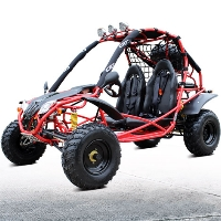 200cc X Jaguar 4 Stroke Go Kart