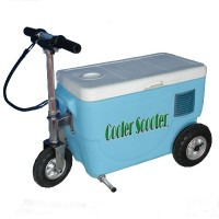 250 Watt Electric Scooter Cooler