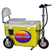 Cruzin Cooler 300 Watt Electric Scooter Cooler