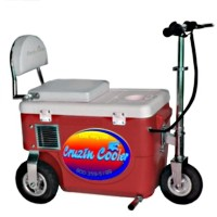 Cruzin Cooler 500 Watt Electric Scooter Cooler