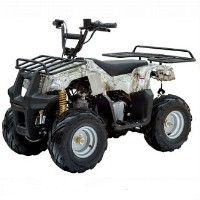 110cc Badger Utility 4 Stroke Fully Auto ATV