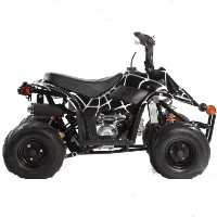 50cc / 110cc Spider Mini ATV