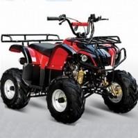 110cc Type-X Utility 4 Stroke ATV