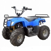 90cc Youth Utility ATV w/ 110cc Engine