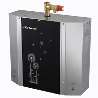 Modern 4KW Steam Bath Generator