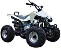 110cc Midsized Teen Atv