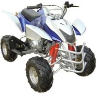 110cc Full Sized Teen Atv