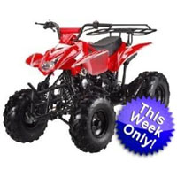 125cc Assassin 4-stroke ATV (Semi-Automatic)