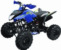 125cc Type R ATV