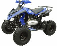 150cc Hammerhead ATV
