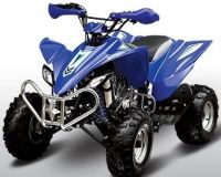 250cc Stealth 4 Stroke Full Size Sport ATV