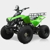 125cc Midsize Fully Automatic ATV with Reverse