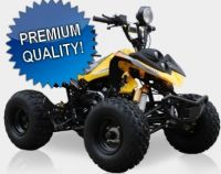 125cc Fully Auto Intruder-SS ATV w/ Reverse