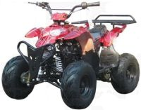 110cc Fully Automatic 4 Stroke ATV w/ Reverse