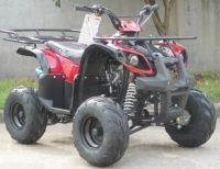 110cc Type X-SE ATV
