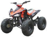 125cc Automatic 4 Stroke Chain Drive ATV w/ Reverse