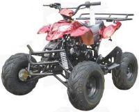 125cc Automatic 4 Stroke ATV w/ Reverse