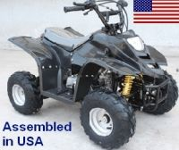 110cc Elite Fully Assembled Automatic ATV