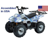 110cc Fully Assembled Automatic Elite Series ATV