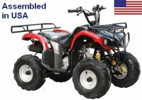 110cc Elite Series Fully Assembled Automatic ATV w/ Chain Drive Transmission