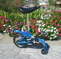 Exercise Tricycle