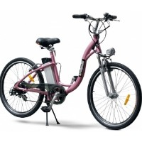 EW800 Electric Bicycle Moped With 250 Watt Lithium Battery