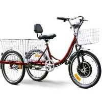 EW88L Electric Trike Bicycle Moped With 450 Watt Motor