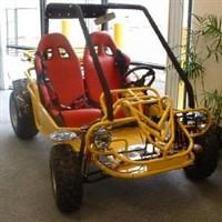 150cc Scorcher 4 stroke Go- Kart