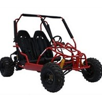 150cc Quad Destroyer Go Kart