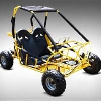 2 Seater 110cc Lynx Go Kart