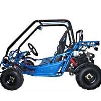 250cc Blaster Go- Kart