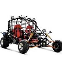 250cc Esquire Go Kart