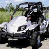 250cc WC-75 Go Kart