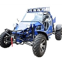 1000cc Super Sand Sniper Go Kart - 2 Seater