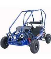 110cc Fully Automatic Cougar Go Kart with Dual Seats & Electric Start