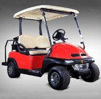 Electric 2 Seater Golf Cart