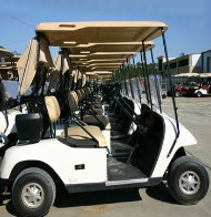 EZ-GO White 36 Volt Electric Golf Cart